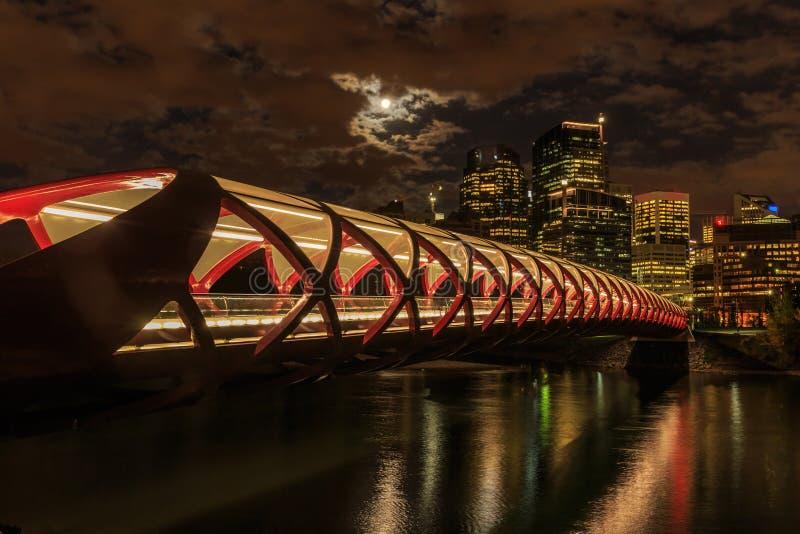 Calgary en la noche imagenes de archivo