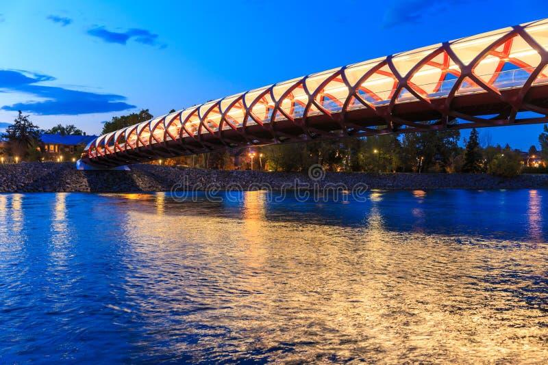 Calgary en la noche fotografía de archivo libre de regalías