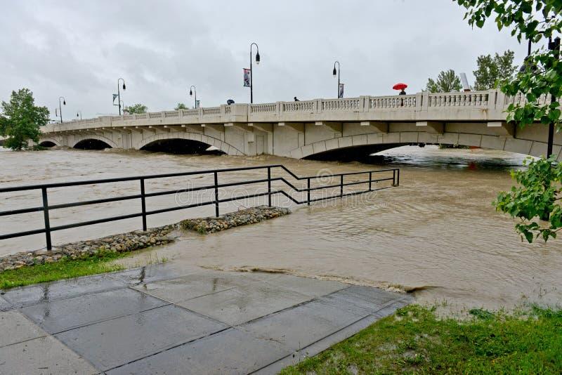Download Calgary Flood 2013 editorial image. Image of alberta - 31768445