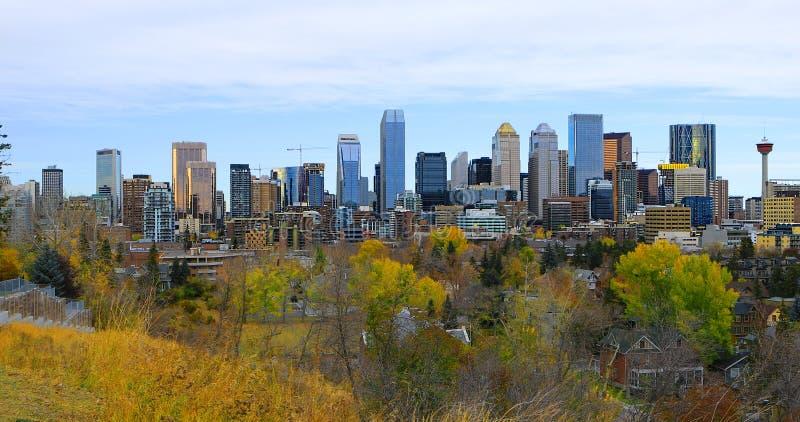 Calgary, Kanada centrum miasta z kolorowym spadkiem opuszcza zdjęcie royalty free