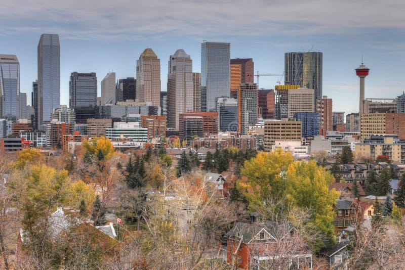 Calgary, Kanada linia horyzontu z spadku ulistnieniem obraz stock