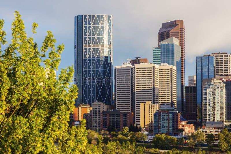 Calgary - panorama av staden fotografering för bildbyråer