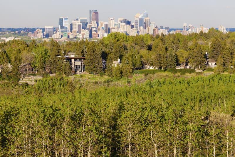 Calgary - panorama av staden royaltyfri bild
