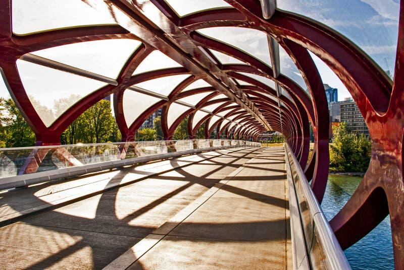 Calgary Peace Bridge Over the Bow River royalty free stock image