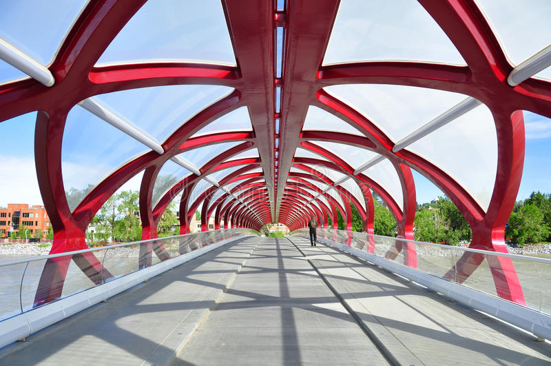 Calgary's Peace Bridge royalty free stock photo