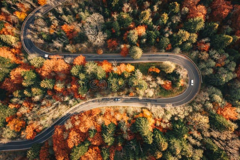 Calha de enrolamento da estrada da montanha a floresta no outono com carros imagens de stock