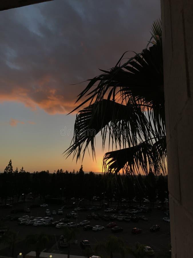 Cali-Sonnenuntergang stockbilder