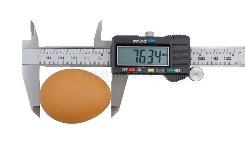 Calibrador a vernier y huevo aislados en blanco imagen de archivo libre de regalías