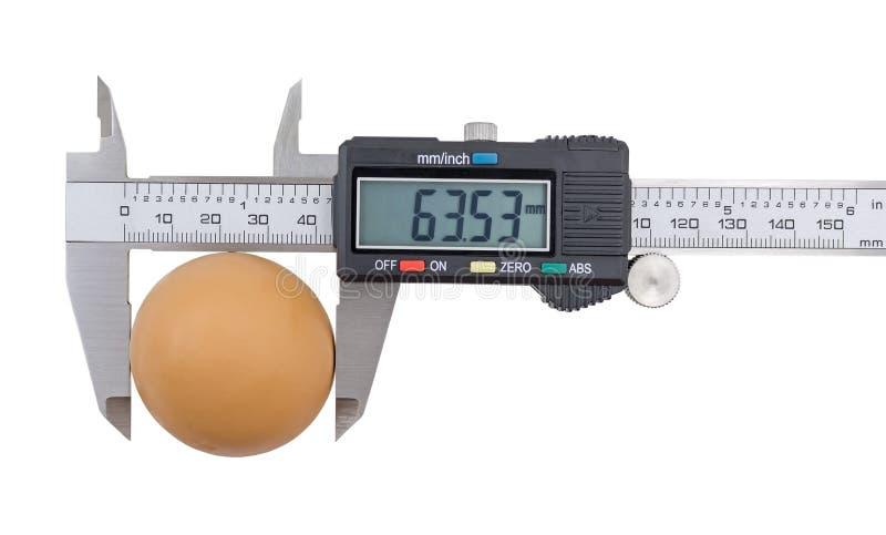 Calibrador a vernier y huevo aislados en blanco foto de archivo libre de regalías