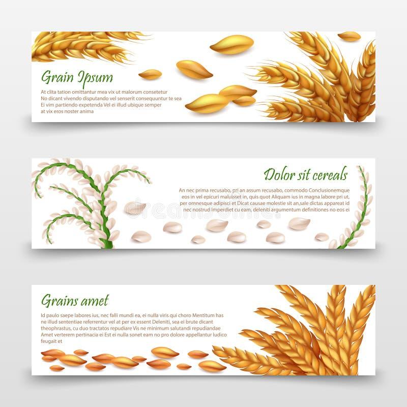 Calibre agricole de bannières de céréales Grains et oreilles réalistes de riz, blé, orge d'isolement sur le fond blanc illustration libre de droits