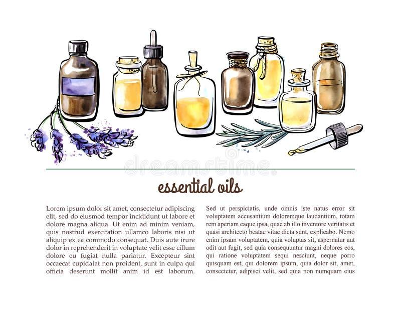 Calibre de carte de vecteur avec les huiles essentielles d'aquarelle illustration libre de droits