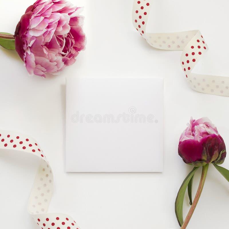 Calibre de carte de voeux décoré par les fleurs de pivoine et le ruban à pois photographie stock