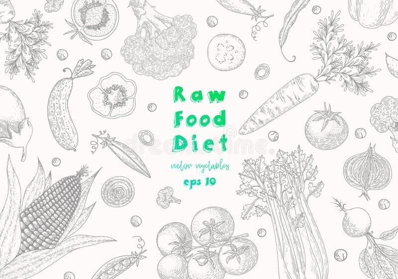 Calibre de conception d'aliment biologique Produit-légumes frais de vegetables Dessin végétarien détaillé de nourriture Produit d illustration stock