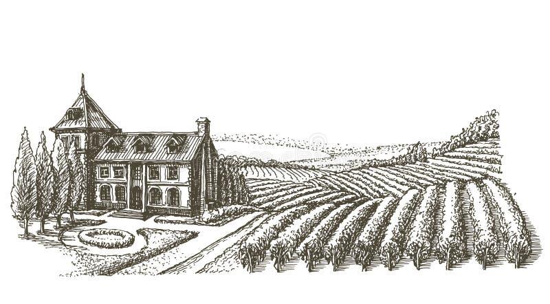 Calibre de conception de logo de vecteur de vignoble village ou illustration de vecteur