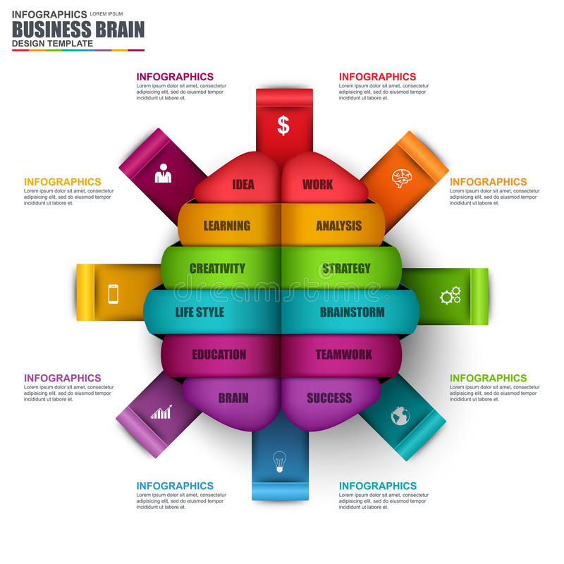 Calibre de conception de vecteur de cerveau d'affaires d'Infographic illustration stock