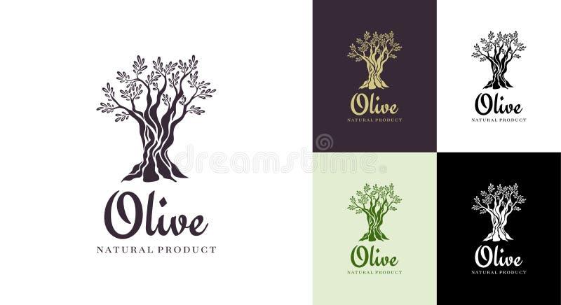 Calibre de conception de logo de vecteur d'olivier pour l'huile Silhouette d'olive d'arbre illustration stock