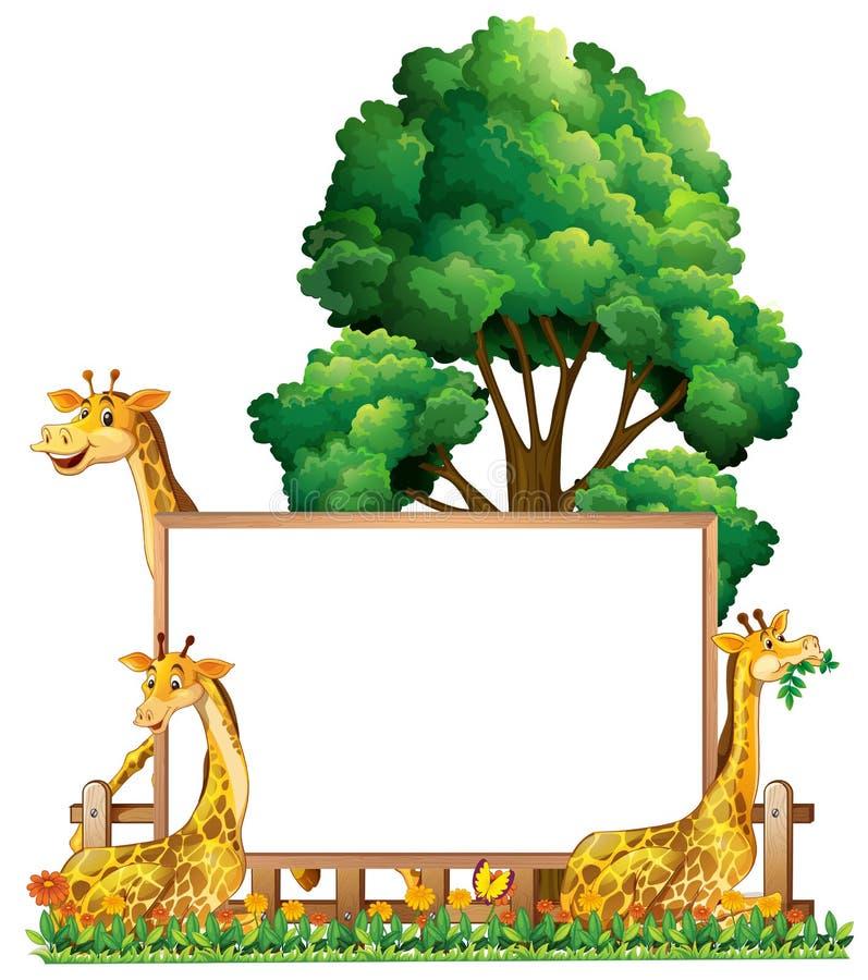 Calibre de conseil avec trois girafes en parc illustration libre de droits