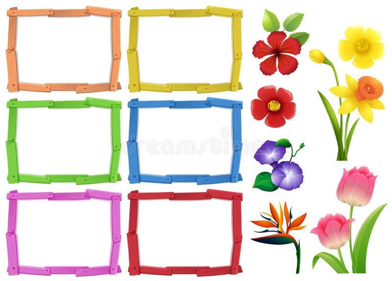 Calibre de vue avec différents genres de fleurs illustration libre de droits