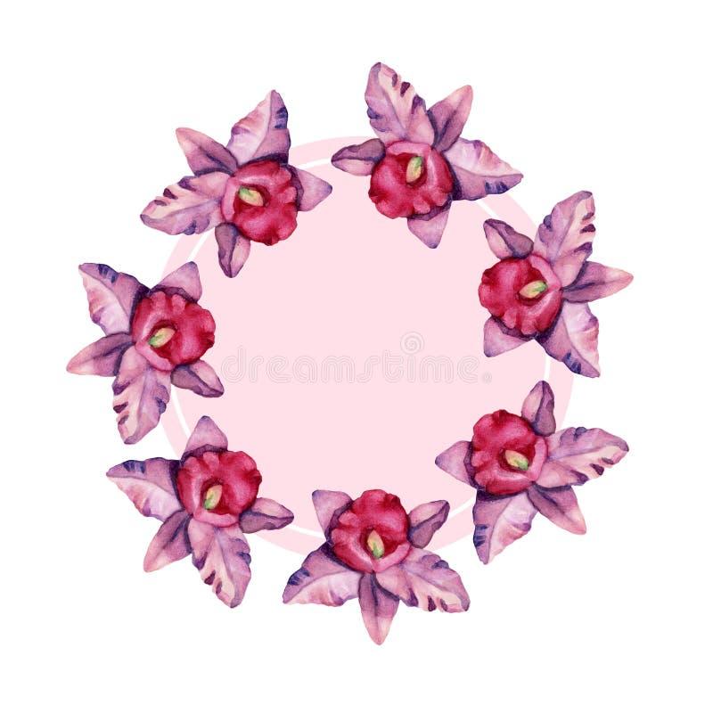 Calibre desiged floral de cadre avec des fleurs et des feuilles d'orchidée d'aquarelle illustration de vecteur