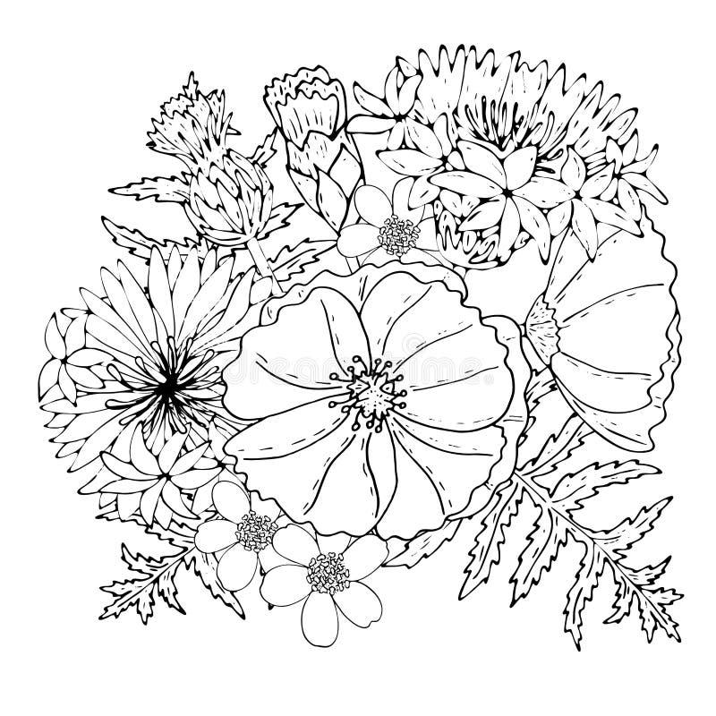 Calibre floral avec la ligne noire fleurs de champ illustration libre de droits