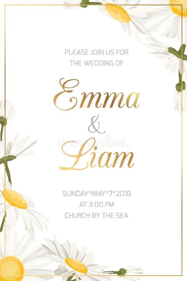 Calibre floral d'invitation de mariage de camomille de marguerite illustration stock