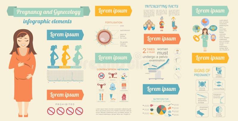 Calibre infographic de gynécologie et de grossesse Elemen de maternité illustration de vecteur