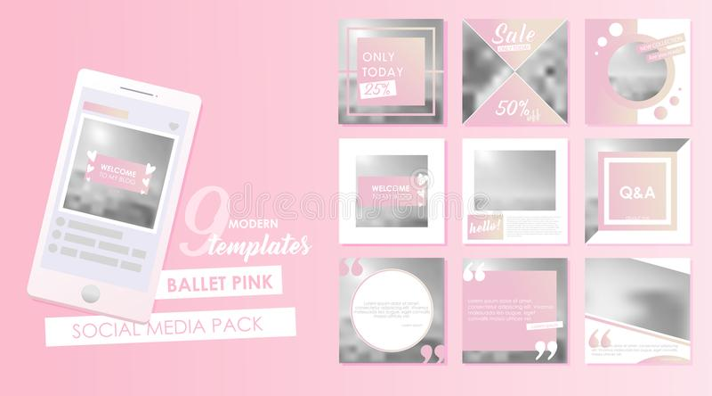 Calibre social de bannière de media pour votre blog ou affaires Conceptions mignonnes de rose en pastel réglées illustration libre de droits