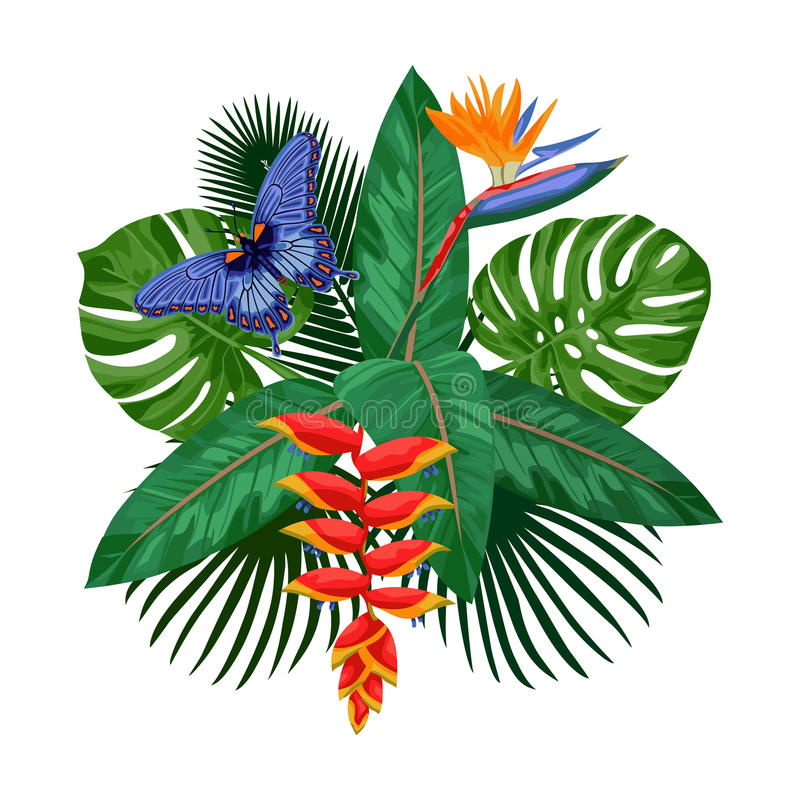 Calibre tropical de carte postale de bouquet illustration libre de droits