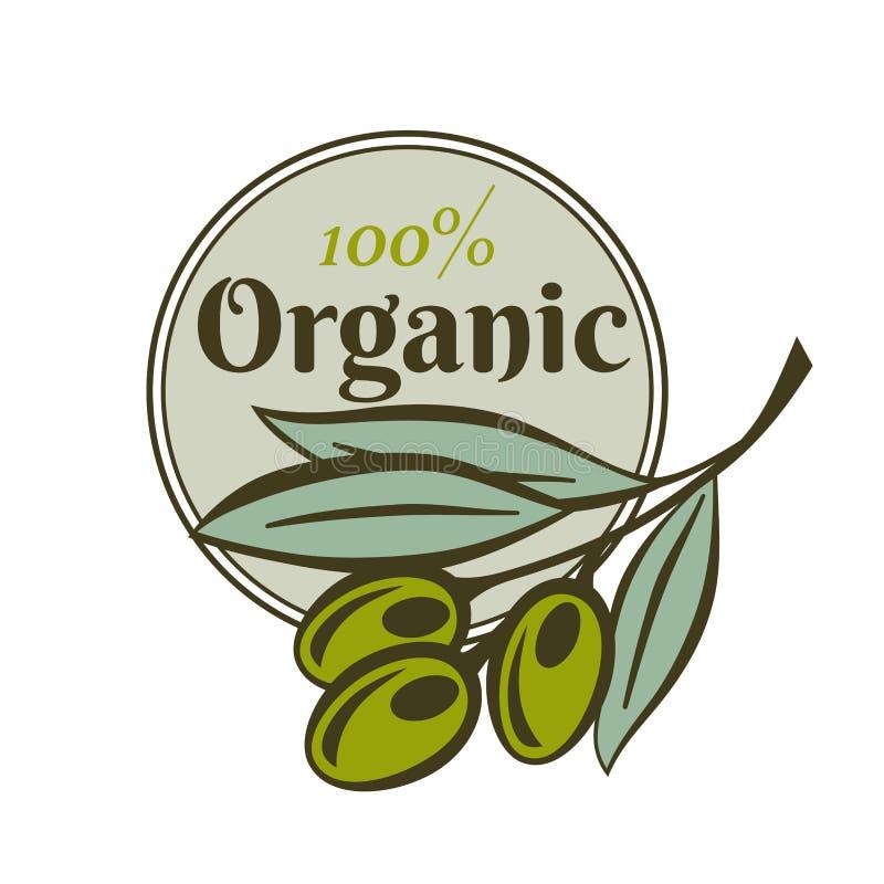 Calibres de label de bouteille et de produit d'huile d'olive Dirigez les icônes de la branche d'olives vertes et de l'huile organ illustration libre de droits