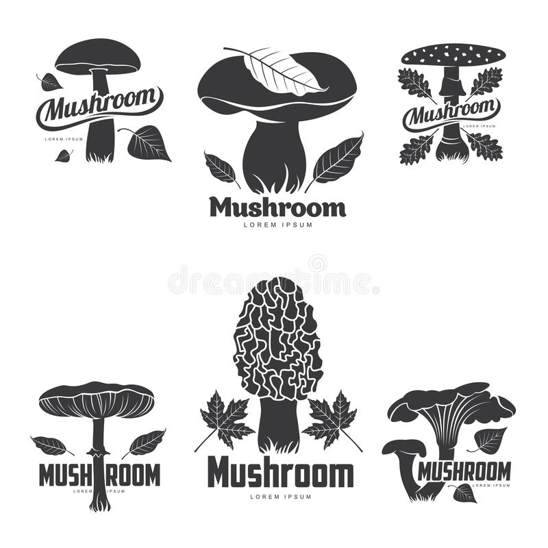 Calibres de logo de champignon illustration stock