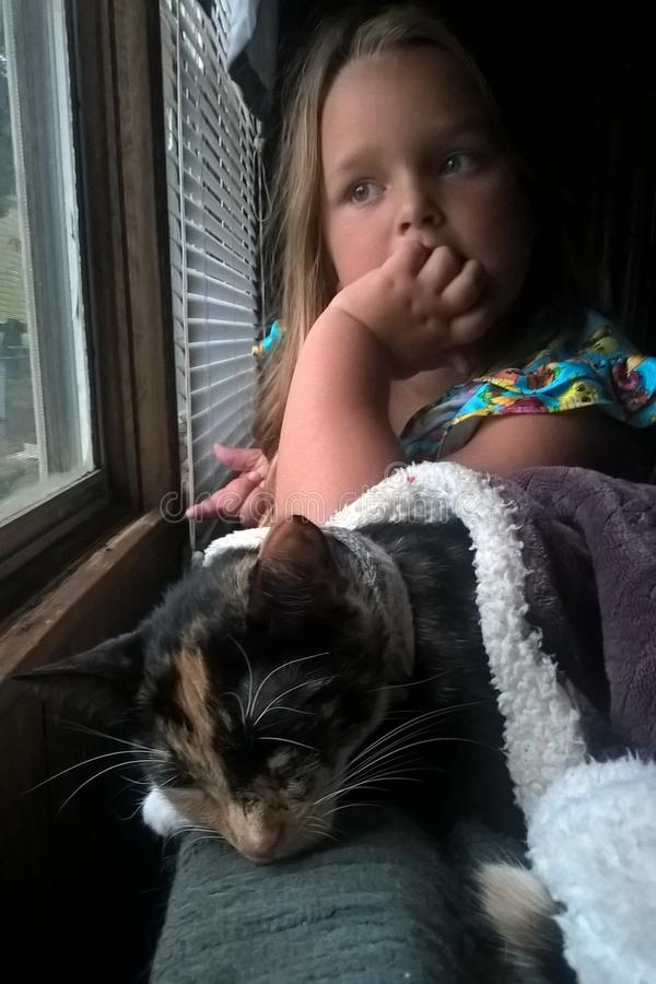 Calicó Cat With Little Girl fotos de archivo