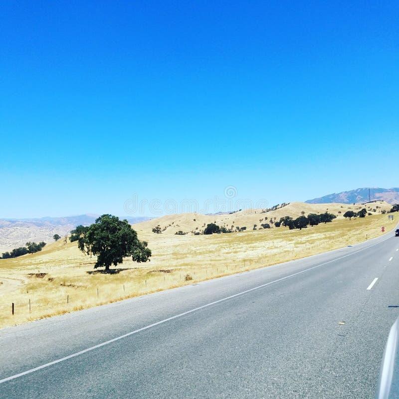 california photo stock