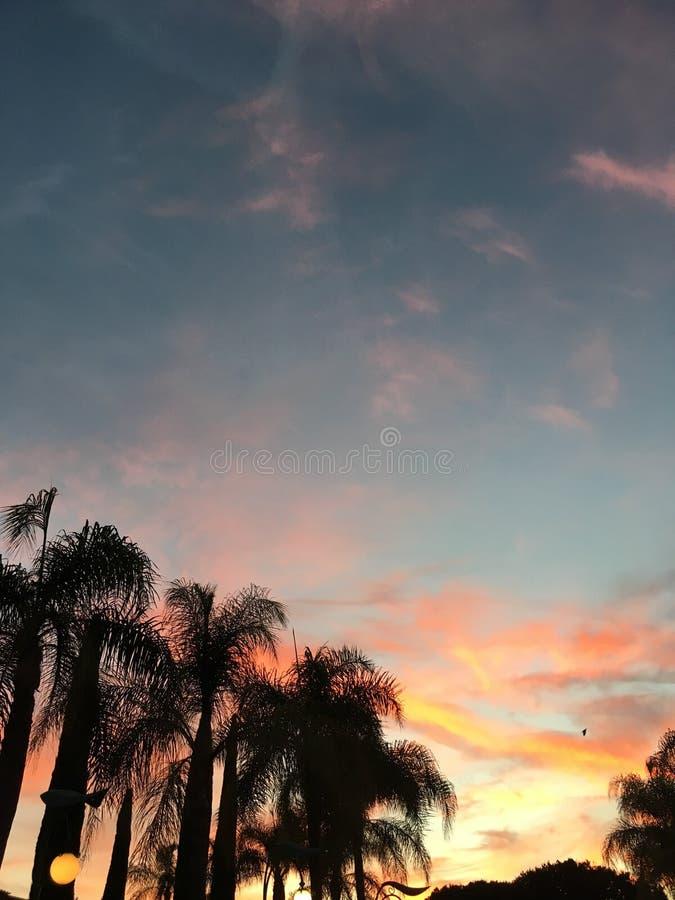california fotografia stock libera da diritti