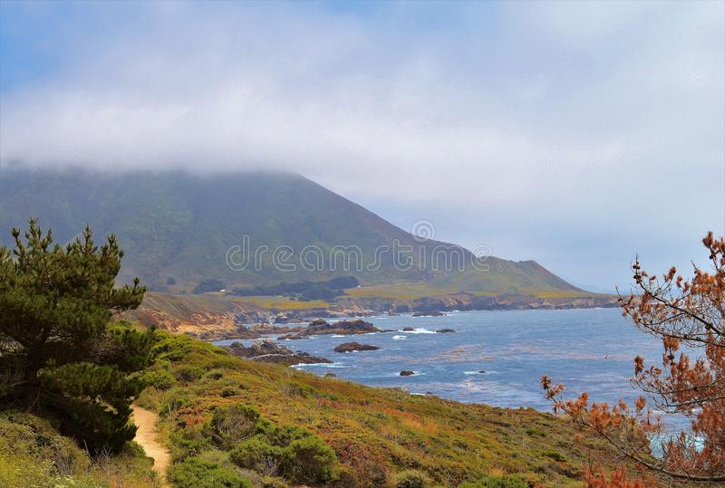 California Beach. Beautiful California beach with sand dunes covered in flowers royalty free stock photo