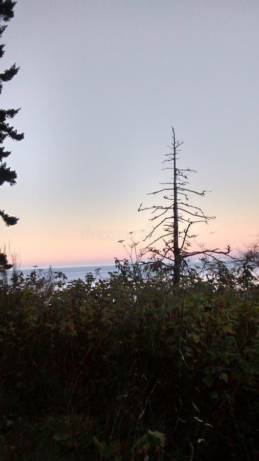 California beach sunset stock photography