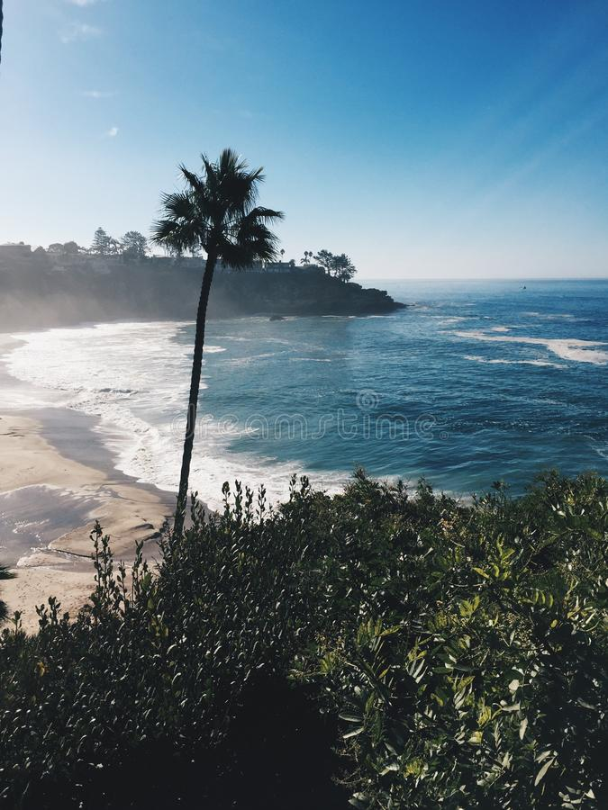 California coast with a palm tree in mid frame stock photos