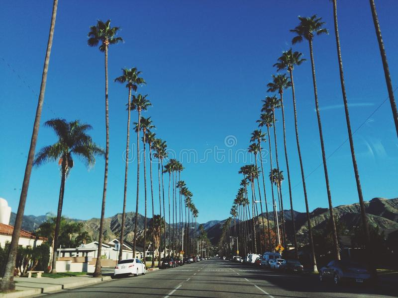 California dreaming royalty free stock images