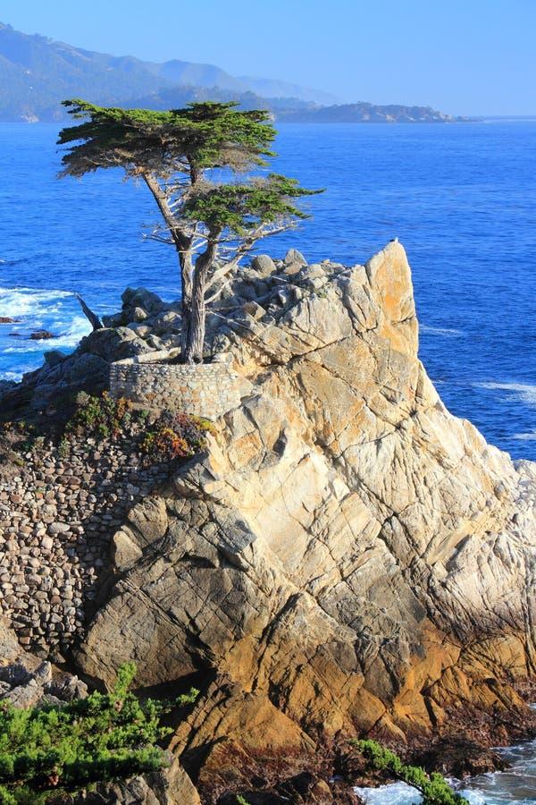 California royalty free stock image