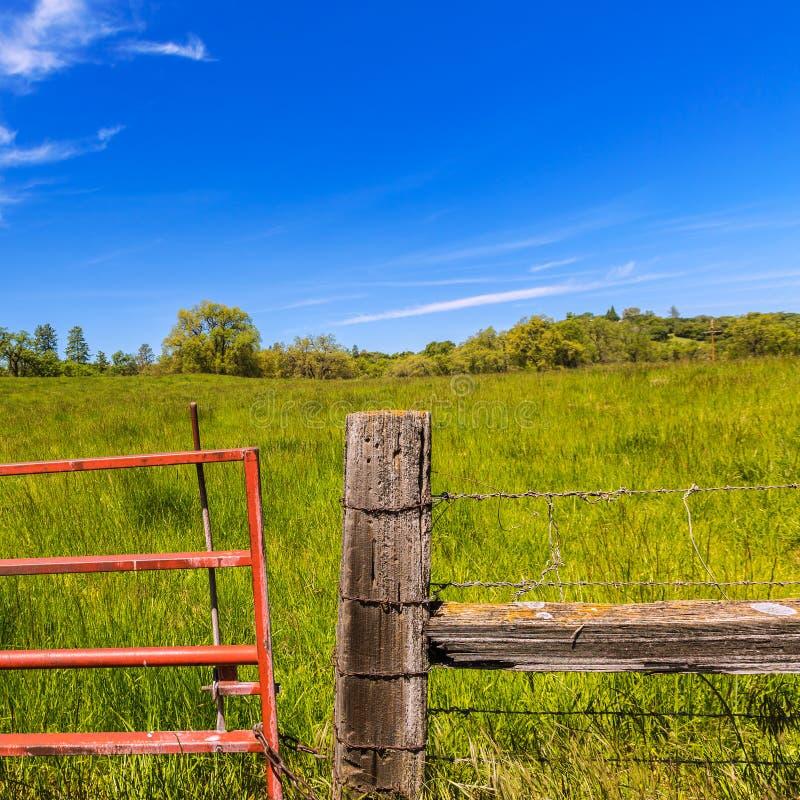 California meadow ranch in a blue sky spring day. USA stock photo
