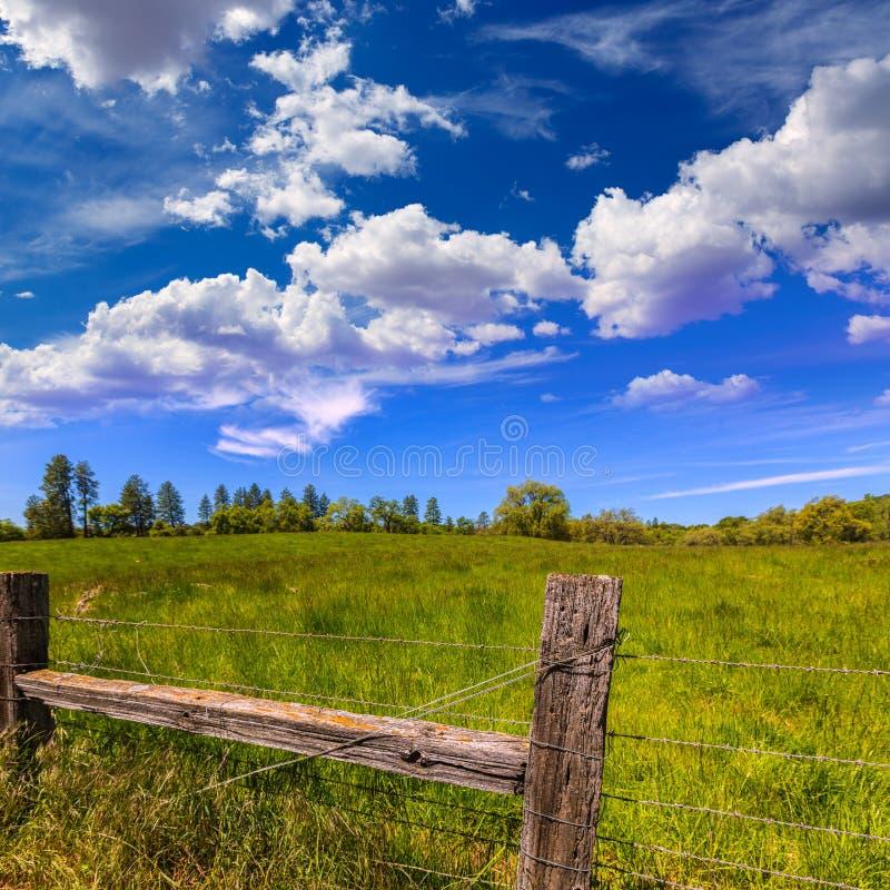 California meadow ranch in a blue sky spring day. USA royalty free stock photos