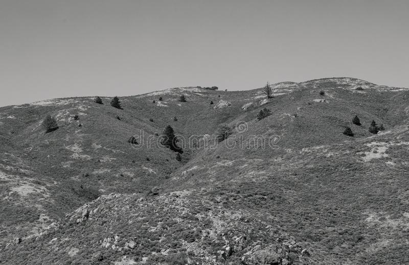 Black and White Bare Dry Mountain Landscape. California muir area street. muir beach local towns and woods area. North of San Francisco. Beautiful mountain town stock photos