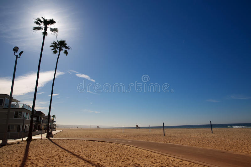 California Newport Beach with high palm trees