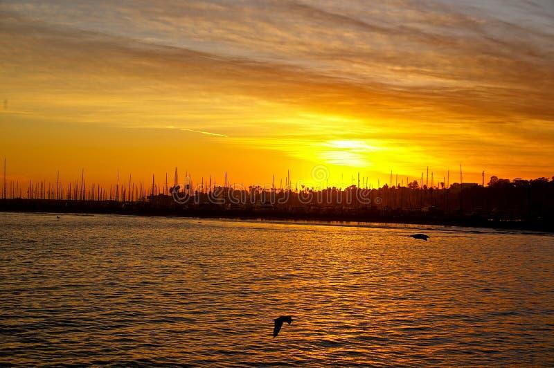Download California Sailboats stock photo. Image of ocean, bird - 25817926