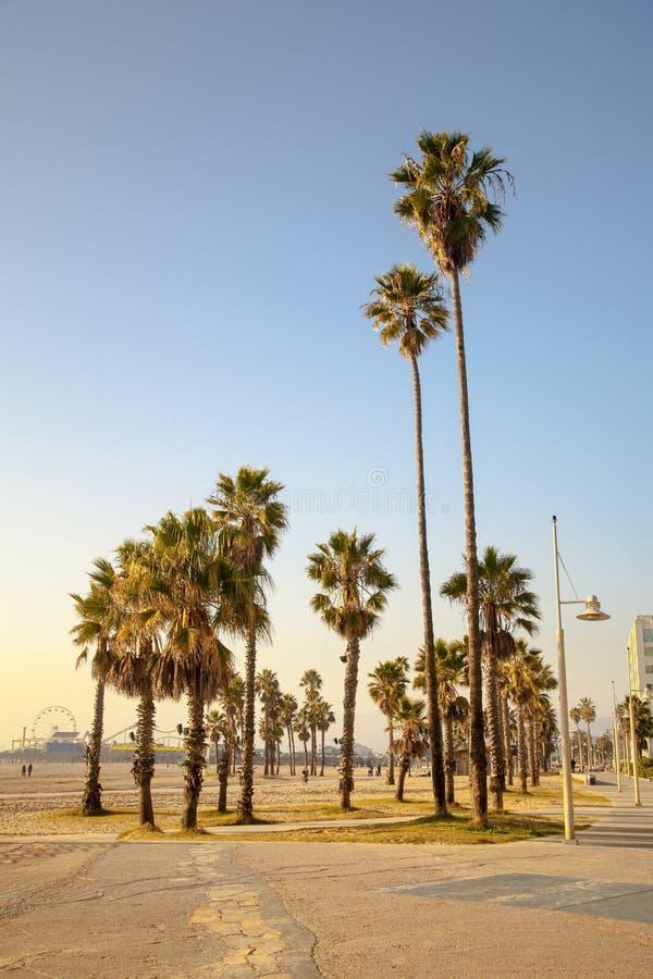 California Sunset - Santa Monica Beach. California Summer - View of palm trees and sand on a sunny day at Santa Monica beach stock photography