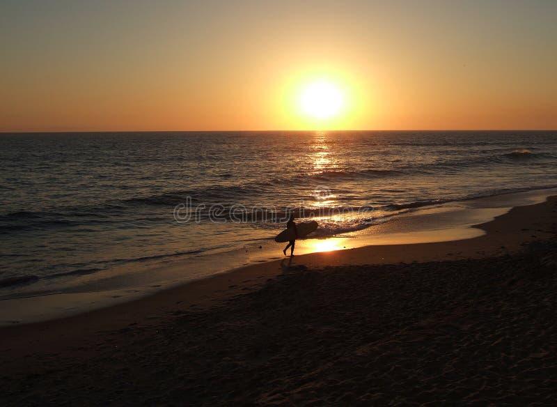 Download California surfer sunset stock image. Image of california - 102113