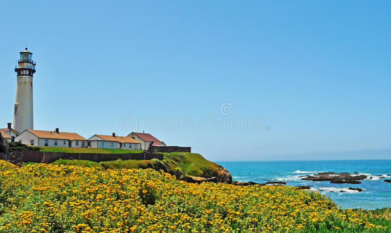 Pigeon Point Light Station, lighthouse, west coast, flowers, Pacific Ocean, beach, California, United States of America, Usa. Pigeon Point Light Station on June stock image