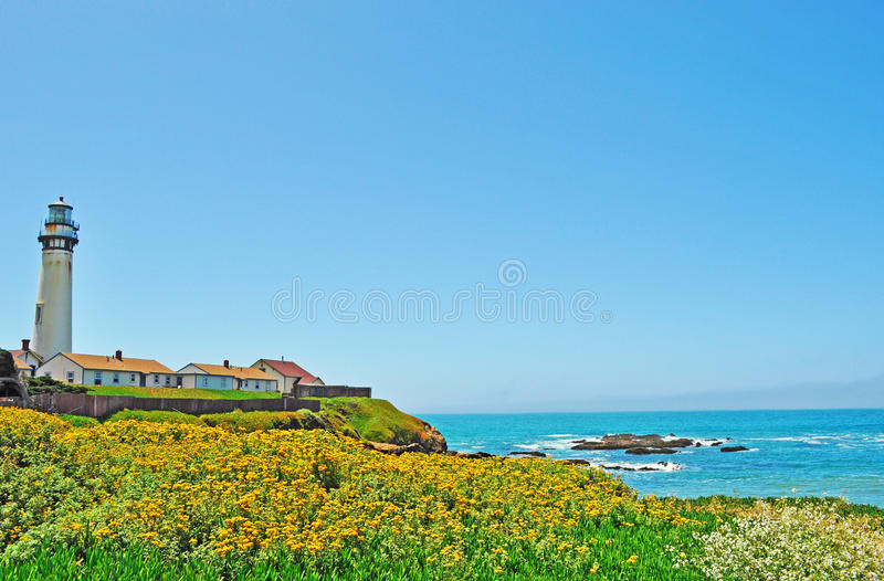 Pigeon Point Light Station, lighthouse, west coast, flowers, Pacific Ocean, beach, California, United States of America, Usa. Pigeon Point Light Station on June stock images