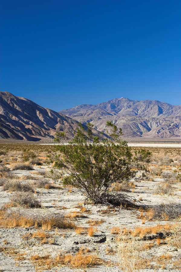Download Californian Desert Royalty Free Stock Photography - Image: 1705917
