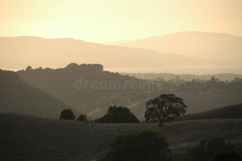 Californian windmill royalty free stock images