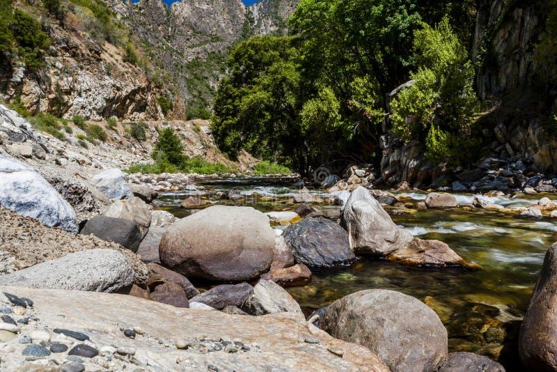 Californische sequoiakreek, Weg 180, het Nationale Park van de Koningencanion, Californ stock fotografie